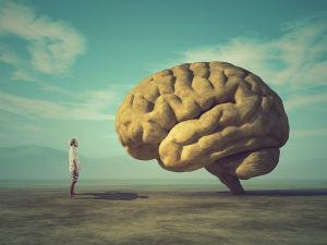 Brain Front Of Mind Real Estate