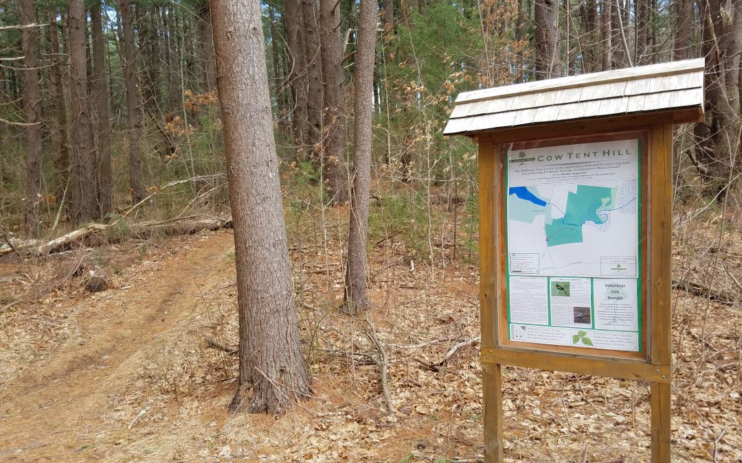 The Everything Duxbury Guide Part 3 of 6 – Walking Trails